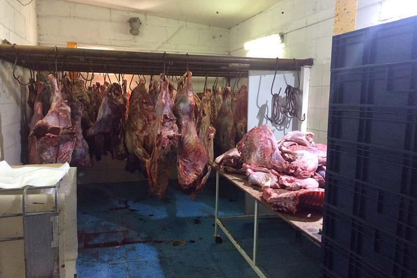 скупка мяса у населения