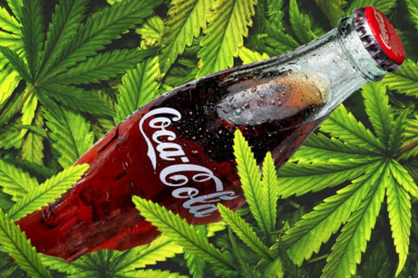 Кола марихуана что содержит конопля