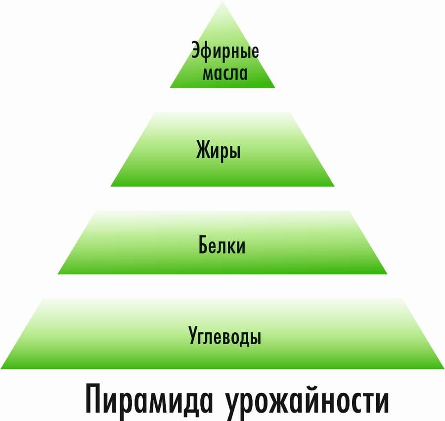 Советы специалиста по органическому земледелию