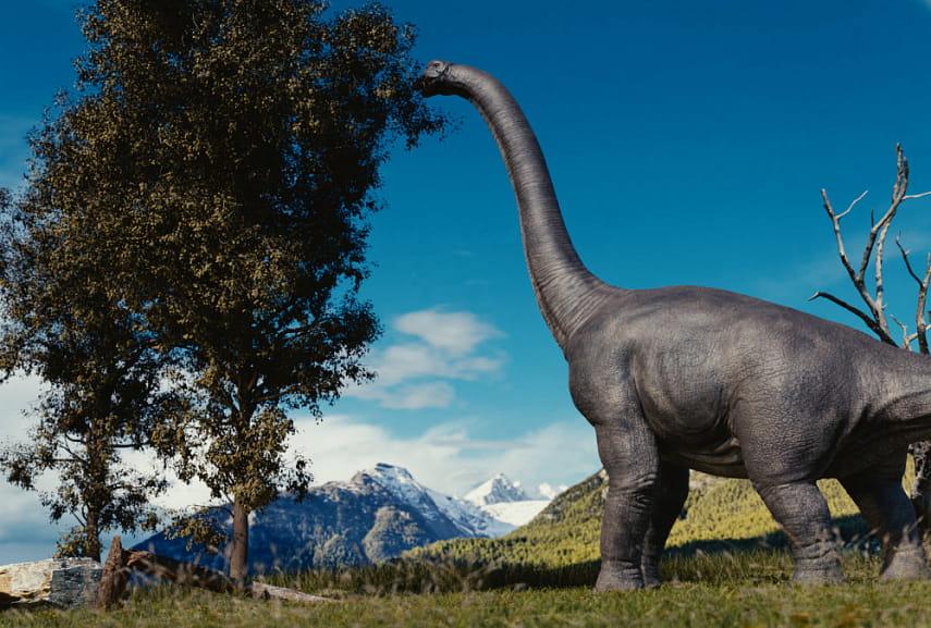 картинки большого динозавра могут увивать забор
