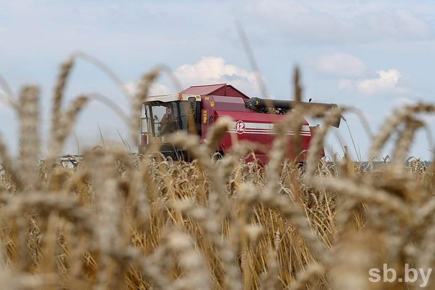 Доклад о сельском хозяйстве перспективы 2019 1675